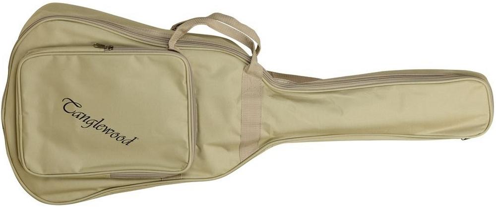 Tanglewood TW2TE_Gig Bag