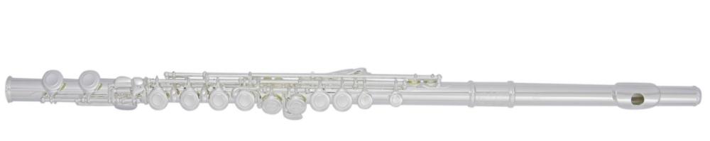 Trevor James TJ10X Flute