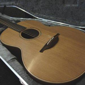 LowdenF35MtnRwoodCedar-11
